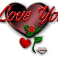 In love you hearts and rose