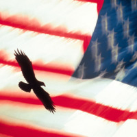 Soaring Eagle & American Flag
