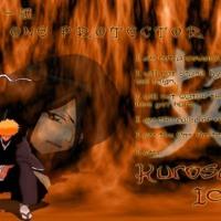 One Protecter Ichigo
