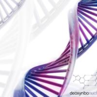 DNA in Blue & Purple