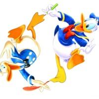 Donald Duck Ducking & Diving