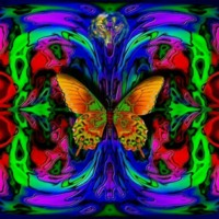 Butterfly Frenzy Abstract
