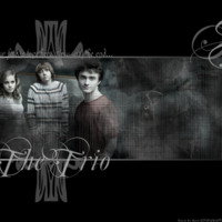 Harry Potter - The Trio
