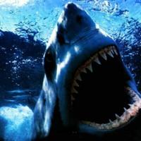 Vicious Shark