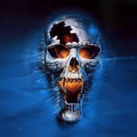 Vampire Silver Skull