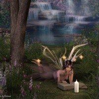 Forrest Fairy Reading