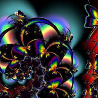 Rainbow Butterly Design