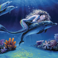Dolphin & Mermaid