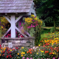 Wishing Well Covered in Flowers
