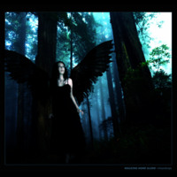 Dark Angel in Forest