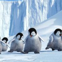 Happy Feet Penguins