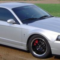 Silver Mustang Cobra