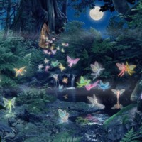 Stream in Woods & Colorful Fairies