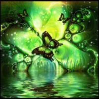 Green Butterfly Water