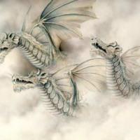 White Furry Dragons