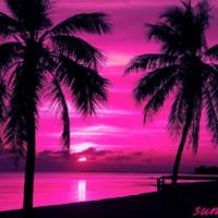 Hot Pink Palm Tree Sunset