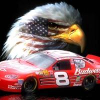 Dale, Jr. Eagle