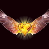 Amber Winged Heart