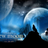 Twilight New Moon Wolf