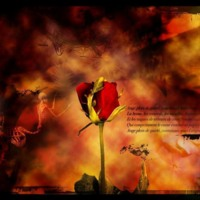 Deadly Rose & Flames