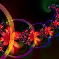 Abstract Plumerias & Circles