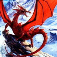 Red Dragon in Snow