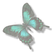 Faded Teal Butterfly