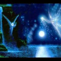 Blue Fairies in Tropical Moonlight World