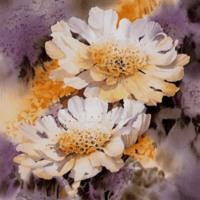 White Watercolor Flowers in Lavender & ORange