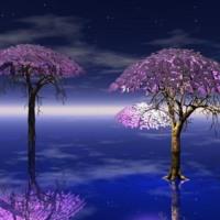 Purple Fairy Trees in Water