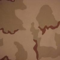 Desert Soldiers Camo