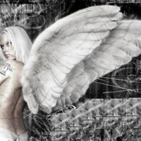 Dark Angel w/ White Wings