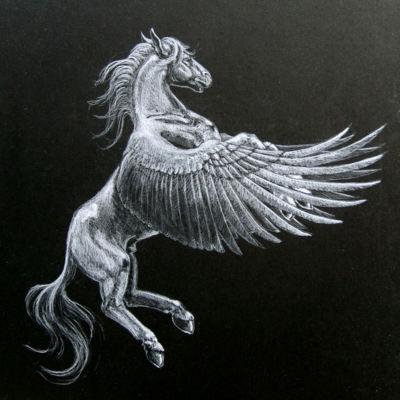 buy popular f5cb9 826e6 Gray Pegasus Tumblr Banners - Pimp-My-Profile.com