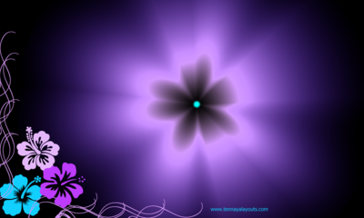 Hibiscus In Pink Turquoise Purple Facebook Timeline Cover