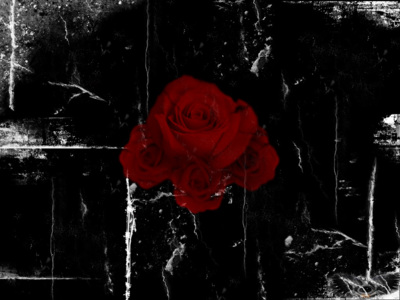 Red Gothic Roses Facebook Timeline Cover Backgrounds
