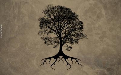 Tree Of Life Drawing Tumblr Banners Pimp My Profile Com